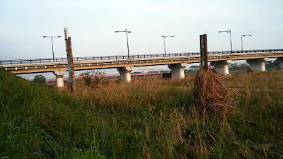 南側河原様子