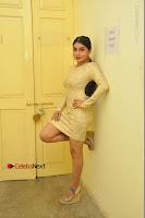 Actress Pooja Roshan Stills in Golden Short Dress at Box Movie Audio Launch  0023.JPG