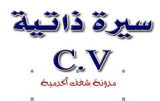 سيرة ذاتية عربي جاهزة للتعديل مجانا CV