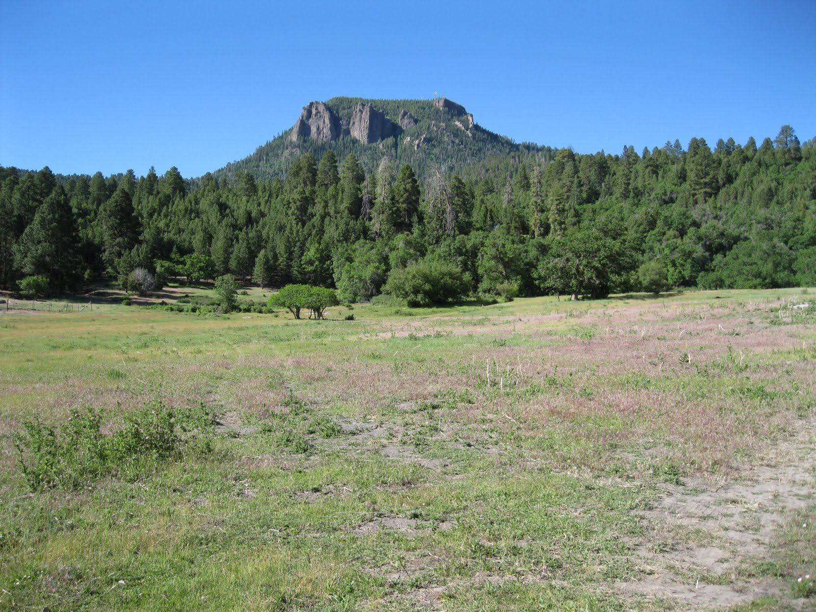 Four Corners Hikes Navajo Nation Shiprock And Buffalo