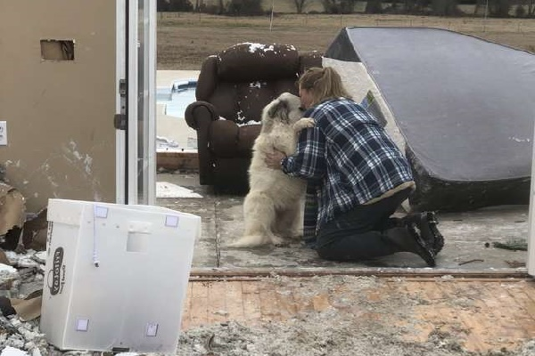 When They Find Each Other After Hurricane, Proprietor & Pet Dog Overcome With Feeling