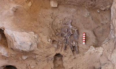 Neandertal inovador continua a reacender o debate sobre o rito da morte