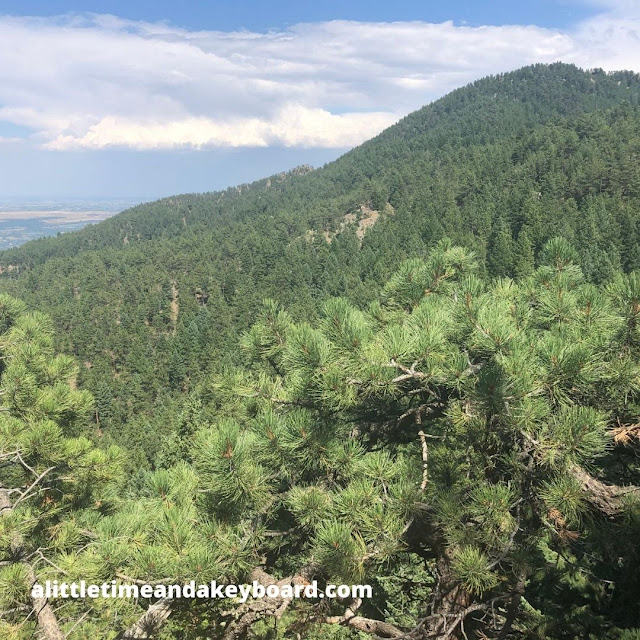 Hiking in the evergreen folds of Boulder's Green Mountain.