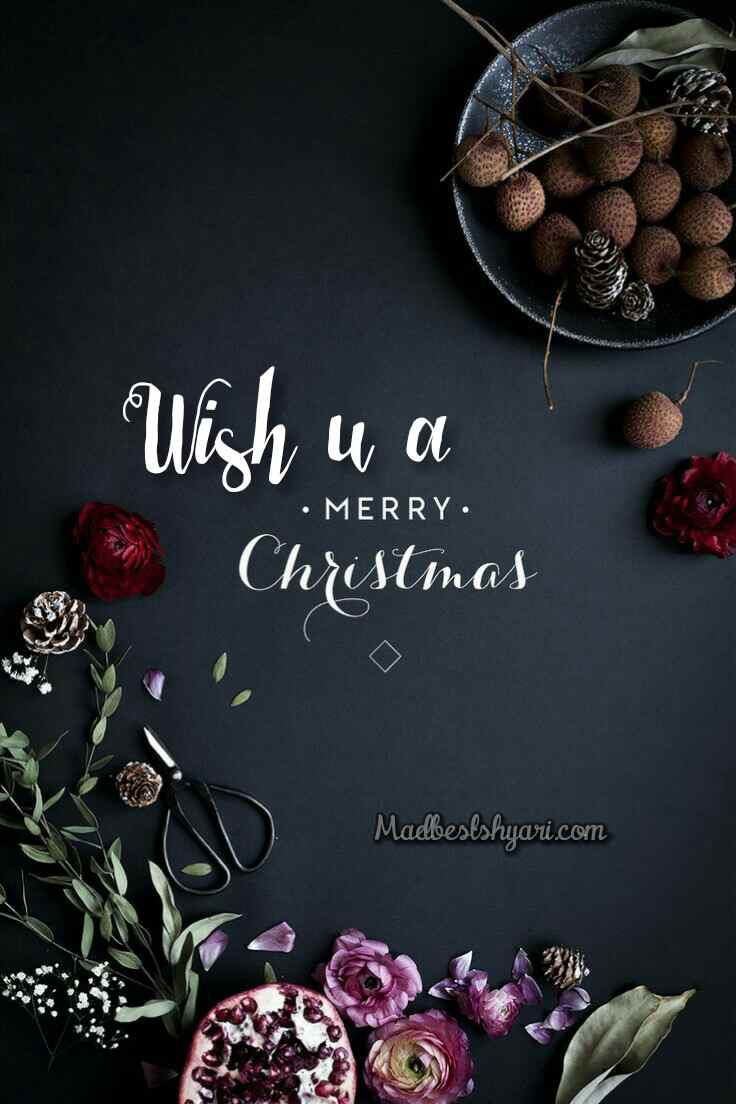Wish u a merry christmas