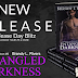 Release Day Blitz: ENTANGLED DARKNESS by Brandy L Rivers