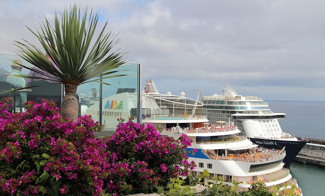 cruise Ships and flowers