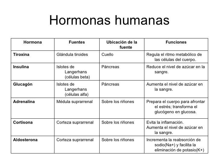 CIENCIAS DE LA NATURALEZA_IES FEDERICO_GARCÍA_LORCA: TAREAS SOBRE ...