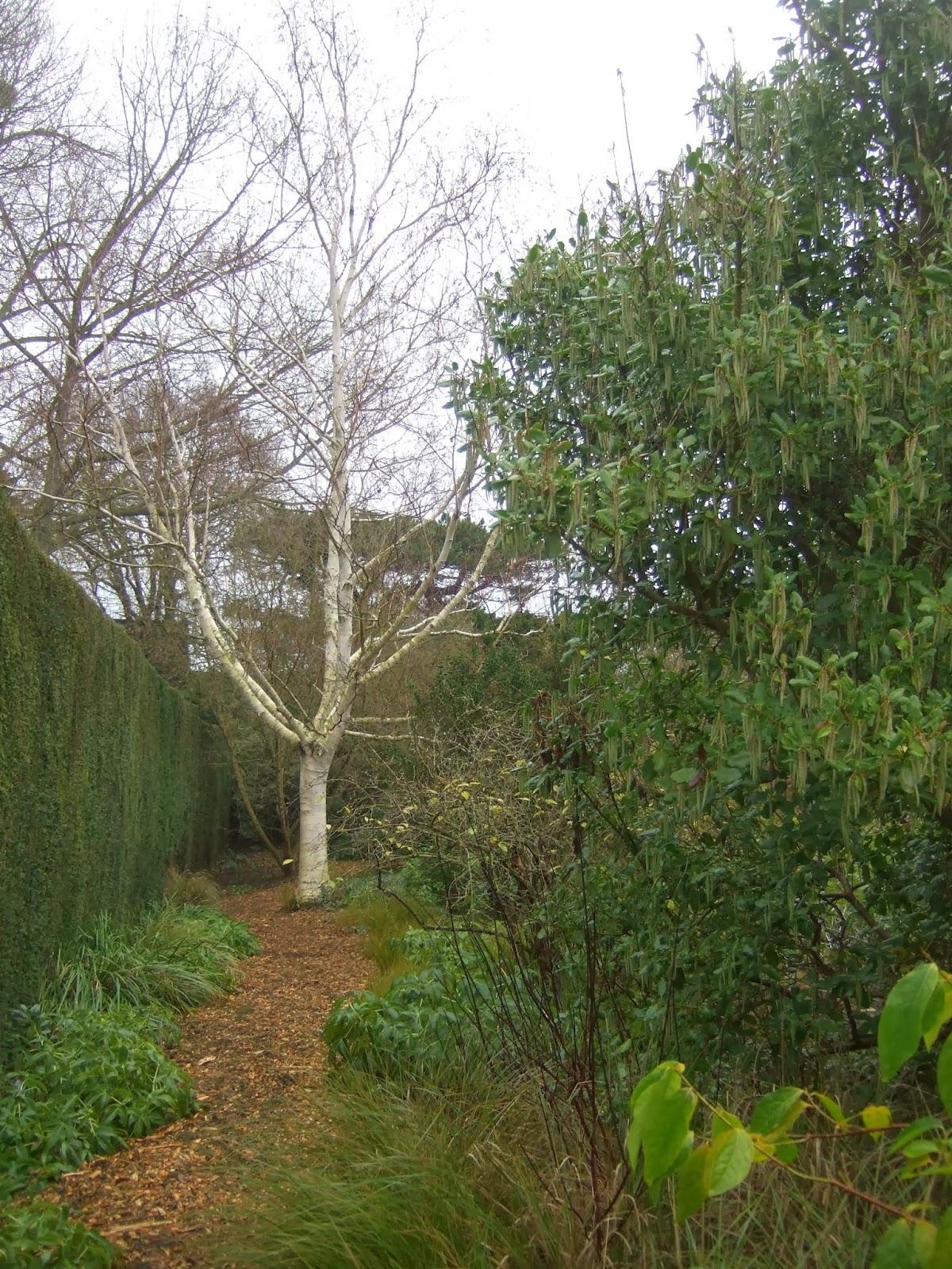 travel in a garden winter gardens or gardens in winter