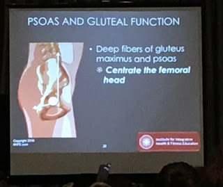dr evan osar fitness mania psoas glute functions injury
