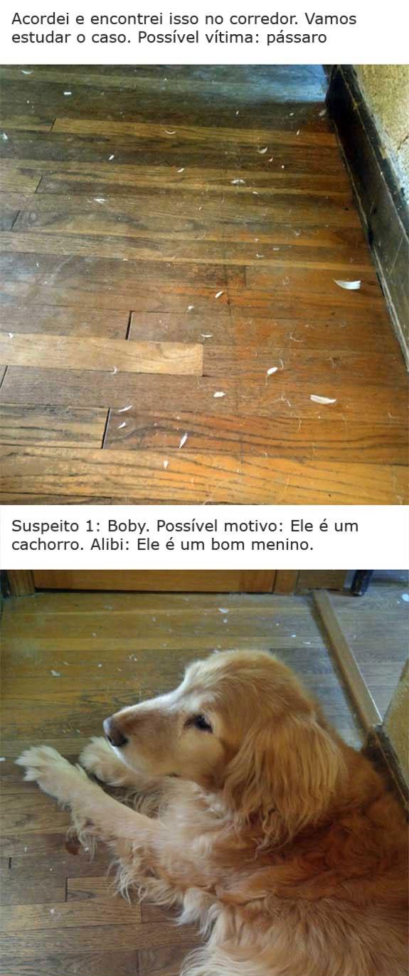 O CASO DO TRAVESSEIRO