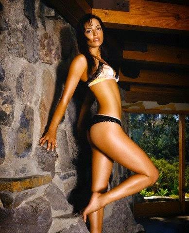 Emmanuelle Vaugier Bikini