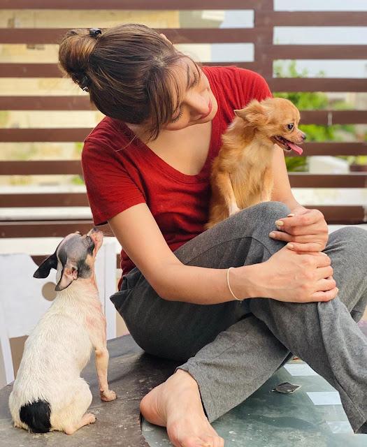 Mehwish Hayat Instagram Pics with Her Pet