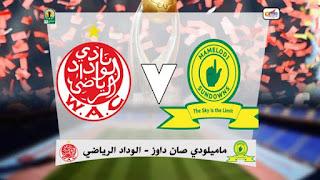بث مباشر مباراة الوداد و ماميلودي صن داونز مباشر دوري ابطال افريقيا