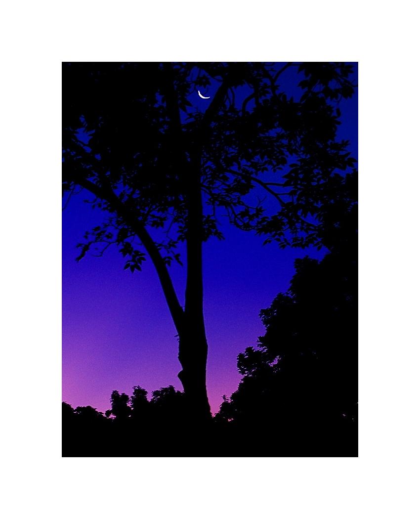 Enhancing The Morning Glow 01