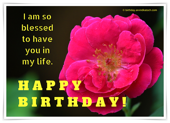 blessed, life, happy birthday, rose, rose card,