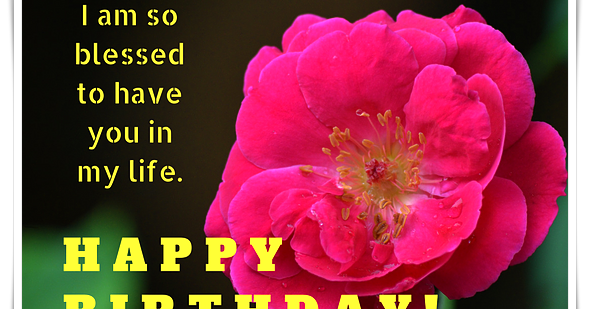 I Am So Blessed To Have You In My Life (Rose Birthday Card