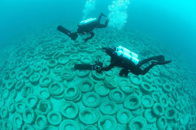 Two million tires were dumped on the sea floor of Osborne Reef