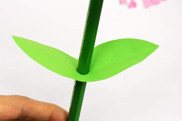 Pindahkan pasangan daun ke atas di tengah batang