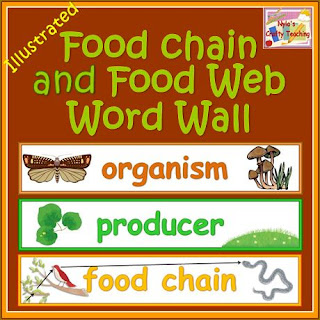 science-literacy-block-food-webs-habitats-animals