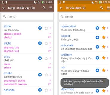 TFlat - Tải từ điển Anh Việt TFlat, dịch tiếng Anh cho máy tính, PC b