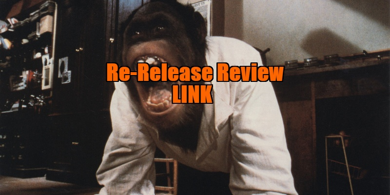 link 1986 review