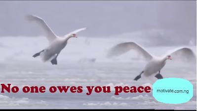 7 Logic to a Peaceful Life