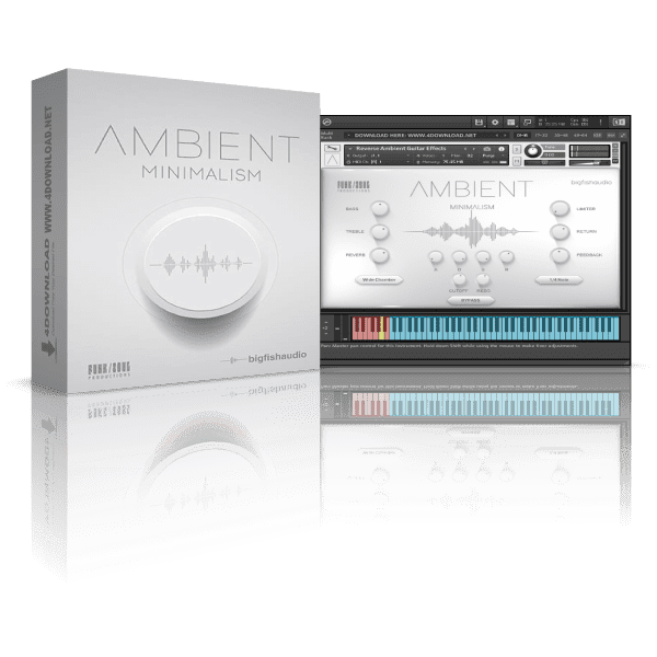 Big Fish Audio Ambient Minimalism KONTAKT Library