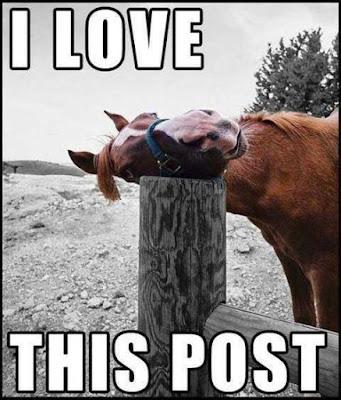 Most Popular Funny Love Meme Ever