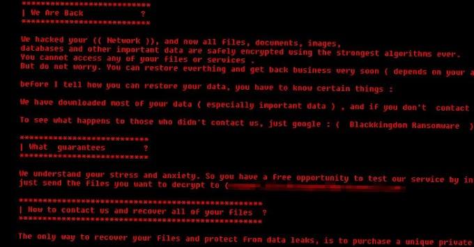 """""""Black Kingdom"""", el peligroso ransomware que hace cualquier cosa"""