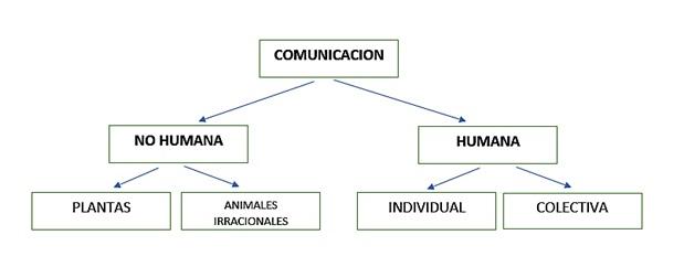 la comunicación no humana, la comunicación humana
