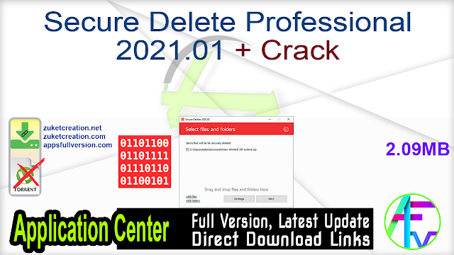 Secure Delete Professional 2021.01 + Crack
