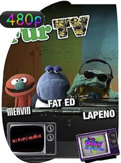 TV de Ciertopelo ( Fur TV) (2004)  Temporada 1 [480p] Latino [GoogleDrive] PGD