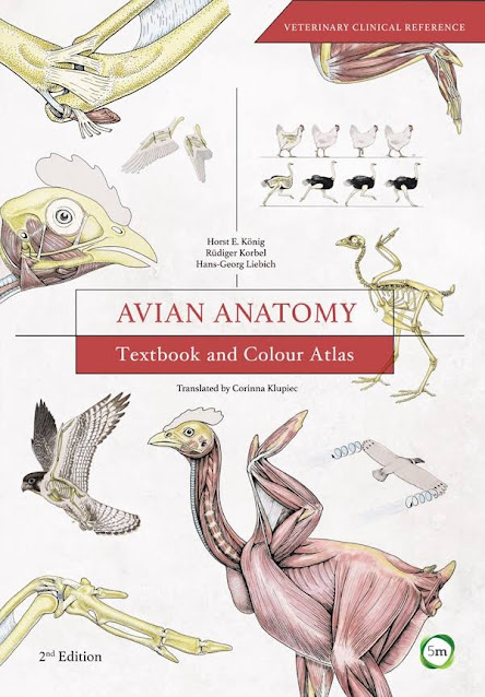 Avian Anatomy Textbook and Colour Atlas, 2nd Edition - WWW.VETBOOKSTORE.COM