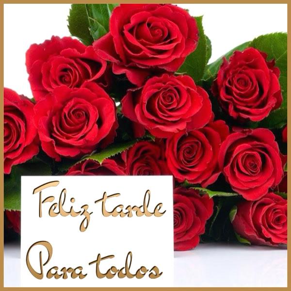 Feliz Tarde rosas