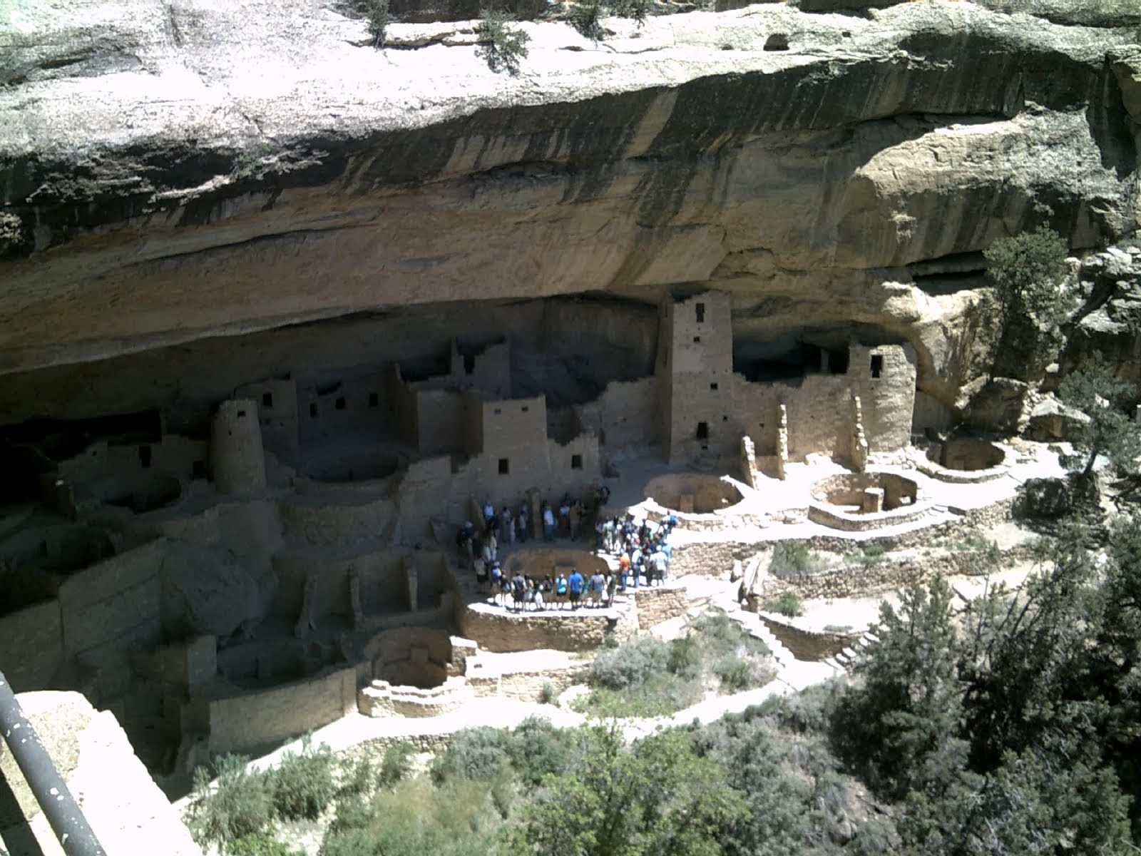 Cliff Palace Mesa Verde Colorado