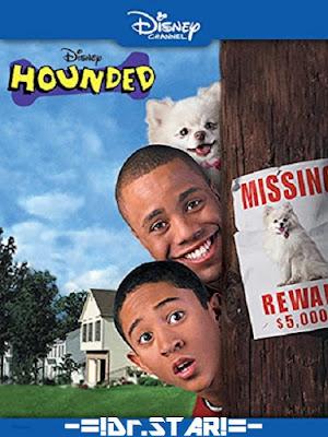 Hounded (2001) 480p 300MB HDTVRip Hindi Dubbed Dual Audio [Hindi – English] MKV
