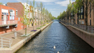 WCA World Championship 2021 in Almere, Amsterdam, Netherlands