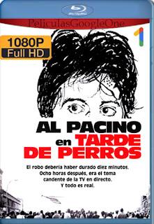 Tarde De Perros (Dog Day Afternoon) (1975) [1080p BRrip] [Latino-Inglés-Castellano] [LaPipiotaHD]