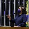 Perpétua defende PL que suspende parcelas de financiamento de veículos para taxistas