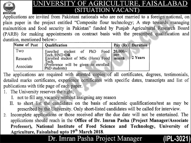 Research Associate Today Latest Jobs in University of Agriculture  Faisalabad