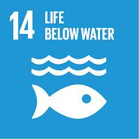 Bærekraftsmål 14 Liv under vann