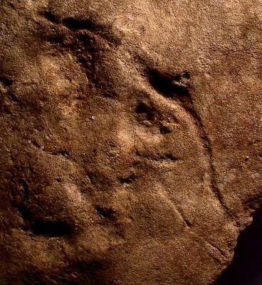Sandstone Petroglyph, 33GU218, Guernsey County, Ohio