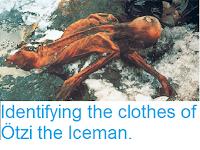 https://sciencythoughts.blogspot.com/2016/08/identifying-cloths-of-otzi-iceman.html