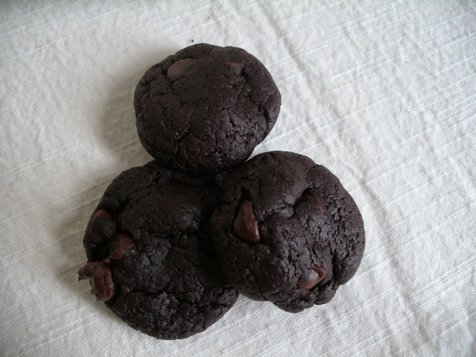 Chewy cocoa cookies with chocolate chips