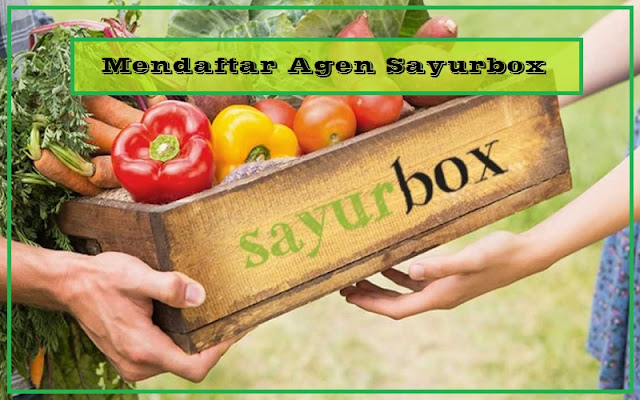 cara daftar agen sayurbox terbaru