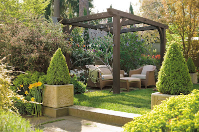 Backyard Patio with Wooden Pergola