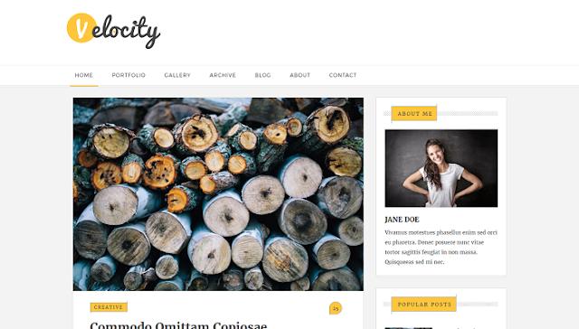Velocity Blogger Teması