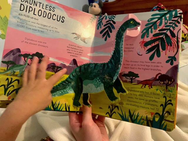 Little boy reading Age of the Dinosaurs book