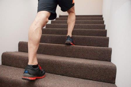The Benefits of Climbing Stairs for Hips, Thighs, Calves, Lower back, Stomach, Gluteal muscles