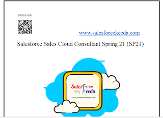 Salesforce Sales Cloud Consultant Spring 21 (SP21) Dumps